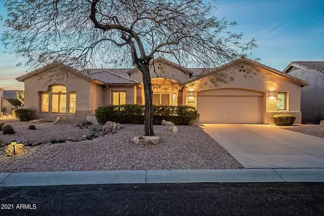 5372 S Cat Claw Drive, Gold Canyon, AZ 85118 (MLS #6187797) :: Yost Realty Group at RE/MAX Casa Grande