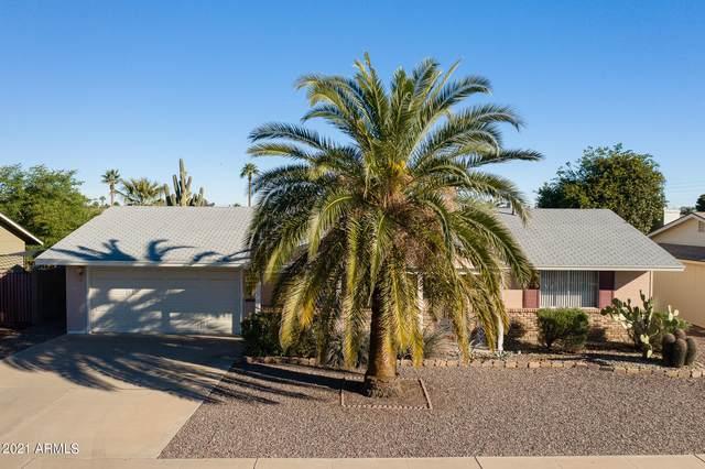 9944 W Tarrytown Avenue, Sun City, AZ 85351 (MLS #6187809) :: Keller Williams Realty Phoenix