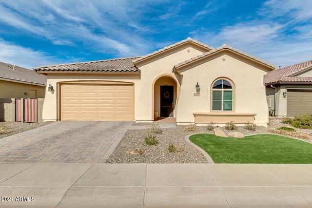 41262 W Almira Drive, Maricopa, AZ 85138 (MLS #6187856) :: Yost Realty Group at RE/MAX Casa Grande