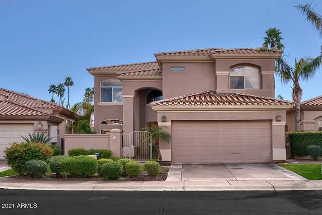 10187 E Bayview Drive, Scottsdale, AZ 85258 (MLS #6188303) :: Yost Realty Group at RE/MAX Casa Grande