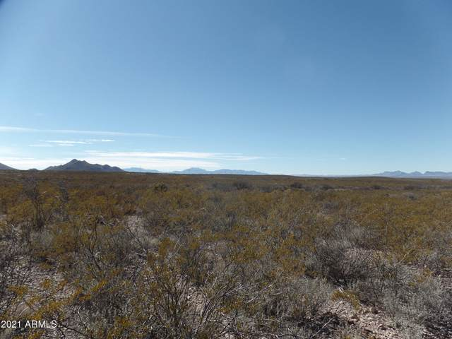 20.1 Acres Cholla Trail, Tombstone, AZ 85638 (MLS #6188450) :: Yost Realty Group at RE/MAX Casa Grande