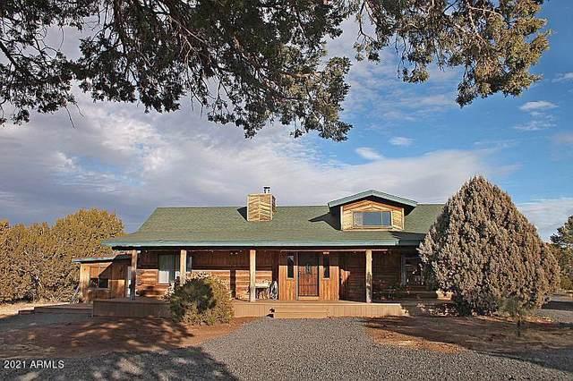 489 County Road 3144, Show Low, AZ 85901 (MLS #6188605) :: TIBBS Realty