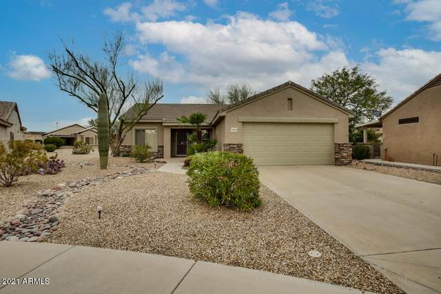 16068 W Autumn Sage Drive, Surprise, AZ 85374 (MLS #6188792) :: Yost Realty Group at RE/MAX Casa Grande