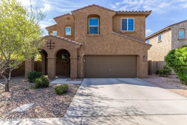 967 E Jacob Street, Chandler, AZ 85225 (MLS #6188830) :: Yost Realty Group at RE/MAX Casa Grande