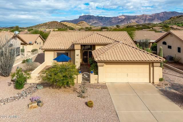 8770 E Brittle Bush Road, Gold Canyon, AZ 85118 (MLS #6188936) :: Yost Realty Group at RE/MAX Casa Grande