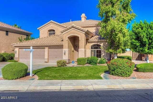 528 E Stottler Drive, Gilbert, AZ 85296 (MLS #6188939) :: Yost Realty Group at RE/MAX Casa Grande
