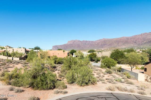 9960 E Fools Gold Place, Gold Canyon, AZ 85118 (MLS #6188954) :: Howe Realty