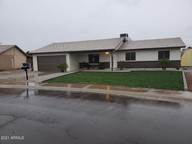3610 W Aster Drive, Phoenix, AZ 85029 (MLS #6189051) :: Yost Realty Group at RE/MAX Casa Grande