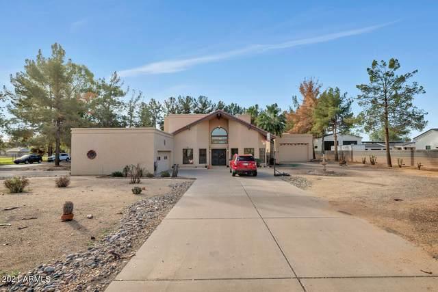 11031 E Cloud Road, Chandler, AZ 85248 (MLS #6189096) :: Yost Realty Group at RE/MAX Casa Grande