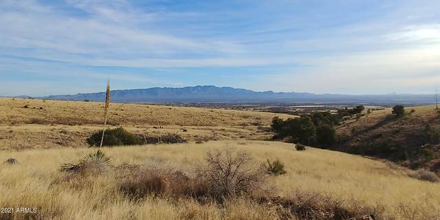 4ac E Renegade Trail, Hereford, AZ 85615 (MLS #6189282) :: The Newman Team