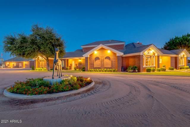 24307 S Lindsay Road, Chandler, AZ 85249 (MLS #6189291) :: Yost Realty Group at RE/MAX Casa Grande
