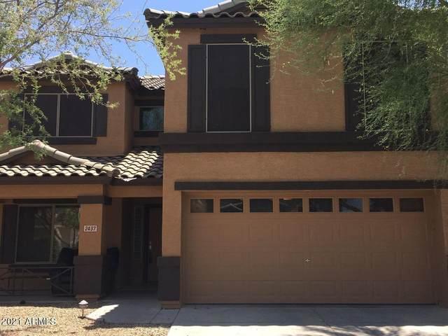 2437 W Silver Sage Lane, Phoenix, AZ 85085 (MLS #6189365) :: Yost Realty Group at RE/MAX Casa Grande