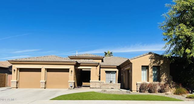 3374 E Cardinal Way, Chandler, AZ 85286 (MLS #6189578) :: Yost Realty Group at RE/MAX Casa Grande
