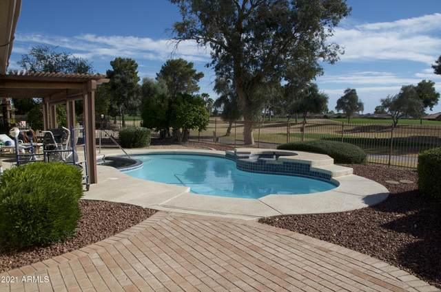 13123 W Paintbrush Drive, Sun City West, AZ 85375 (MLS #6189623) :: Yost Realty Group at RE/MAX Casa Grande
