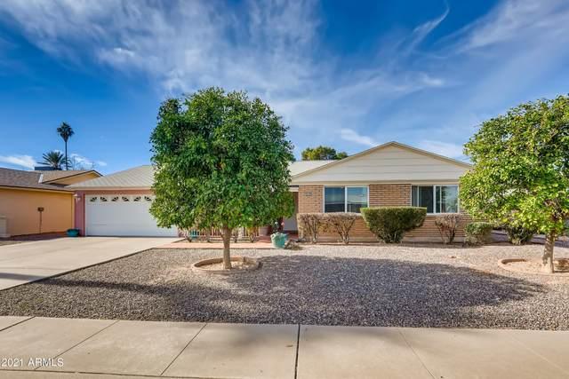 10238 N 109TH Avenue, Sun City, AZ 85351 (MLS #6189635) :: Yost Realty Group at RE/MAX Casa Grande