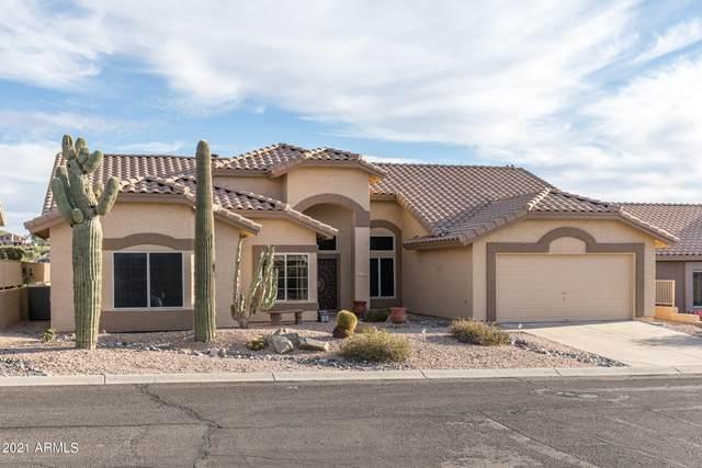 9049 E Brittle Bush Road, Gold Canyon, AZ 85118 (MLS #6189671) :: Yost Realty Group at RE/MAX Casa Grande