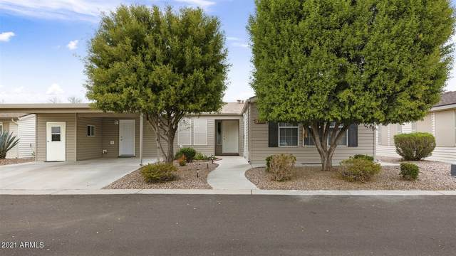 3301 S Goldfield Road #1015, Apache Junction, AZ 85119 (MLS #6190049) :: D & R Realty LLC