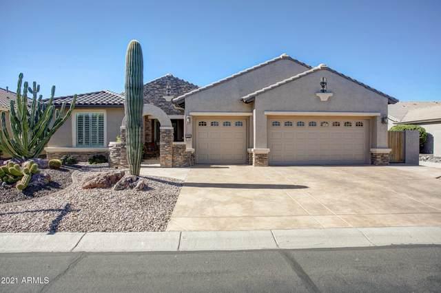 2584 N 164TH Avenue, Goodyear, AZ 85395 (MLS #6190078) :: Yost Realty Group at RE/MAX Casa Grande