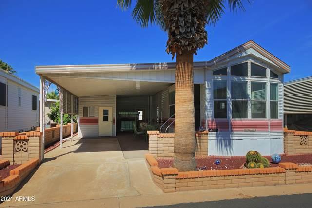 111 S Greenfield Road #563, Mesa, AZ 85206 (MLS #6190159) :: D & R Realty LLC