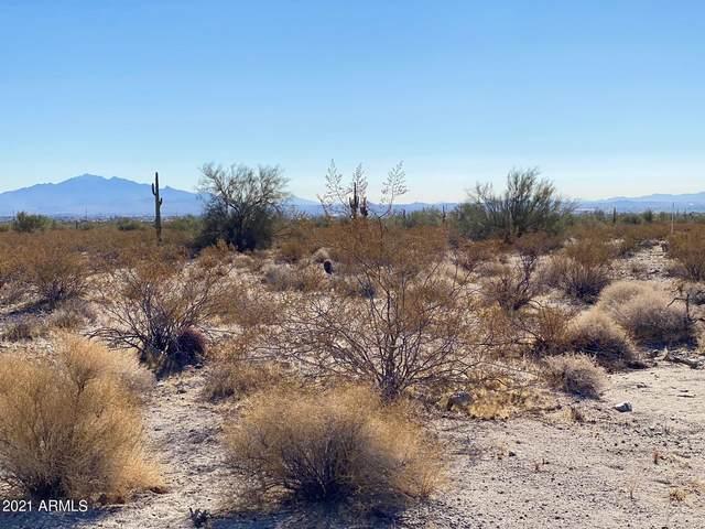 23001 W Lynwood Street, Buckeye, AZ 85396 (MLS #6190166) :: The Daniel Montez Real Estate Group