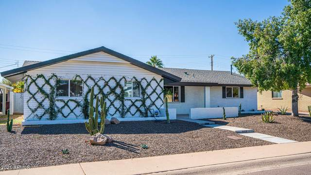 8301 E Meadowbrook Avenue, Scottsdale, AZ 85251 (MLS #6190193) :: The Copa Team | The Maricopa Real Estate Company