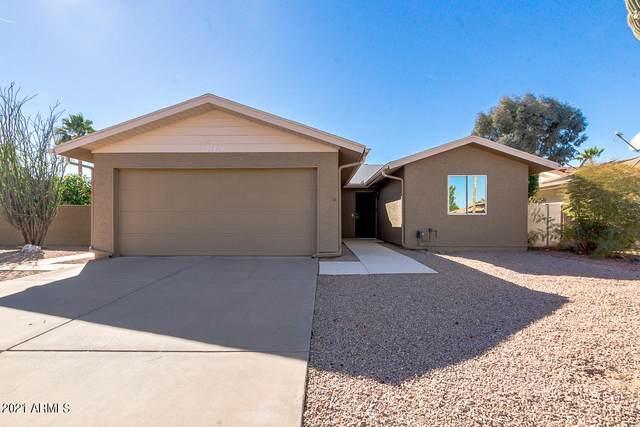 26414 S Dartford Drive, Sun Lakes, AZ 85248 (MLS #6190249) :: Yost Realty Group at RE/MAX Casa Grande