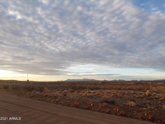 24795 W Warbonnet Road, Willcox, AZ 85643 (MLS #6190336) :: ASAP Realty