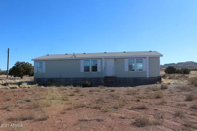 181 River Springs Ranch, St Johns, AZ 85936 (MLS #6190513) :: Keller Williams Realty Phoenix