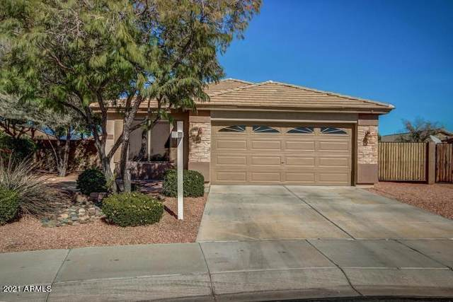 15537 N 159TH Court, Surprise, AZ 85374 (MLS #6190540) :: Yost Realty Group at RE/MAX Casa Grande