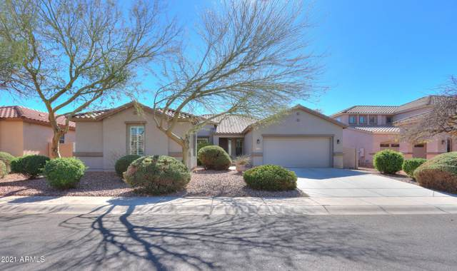 41941 W Monteverde Court, Maricopa, AZ 85138 (MLS #6190809) :: Yost Realty Group at RE/MAX Casa Grande