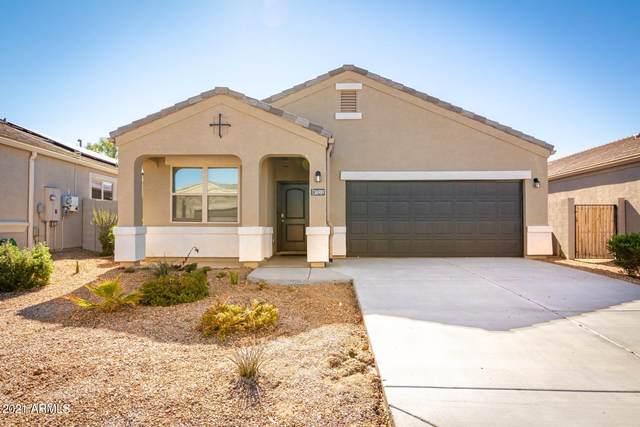 36989 W Maddaloni Avenue, Maricopa, AZ 85138 (MLS #6190839) :: Yost Realty Group at RE/MAX Casa Grande