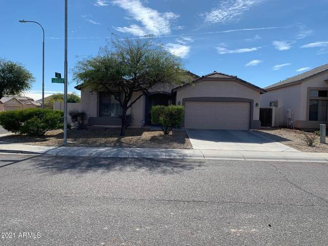 10755 W Locust Lane, Avondale, AZ 85323 (MLS #6191005) :: Yost Realty Group at RE/MAX Casa Grande