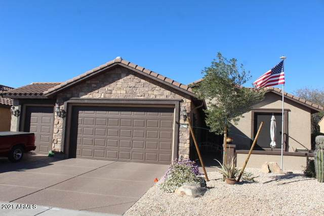 27254 W Potter Drive, Buckeye, AZ 85396 (MLS #6191252) :: Yost Realty Group at RE/MAX Casa Grande