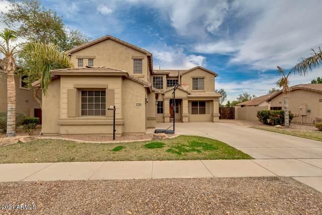 4612 E Ironhorse Road, Gilbert, AZ 85297 (MLS #6191285) :: Yost Realty Group at RE/MAX Casa Grande