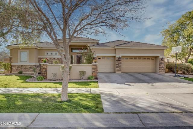 3001 E Comstock Drive, Gilbert, AZ 85296 (MLS #6191301) :: Yost Realty Group at RE/MAX Casa Grande