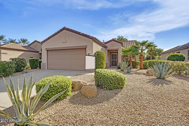 15953 W Palm Lane, Surprise, AZ 85374 (MLS #6191353) :: Maison DeBlanc Real Estate