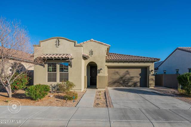 12009 S 183RD Drive, Goodyear, AZ 85338 (MLS #6191419) :: Yost Realty Group at RE/MAX Casa Grande