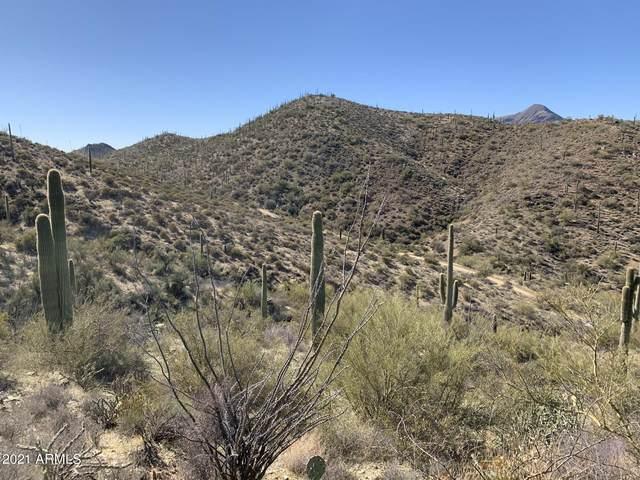 44901 N Cottonwood Canyon Road, Cave Creek, AZ 85331 (MLS #6191605) :: Hurtado Homes Group