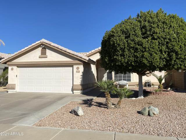 1404 W Michelle Drive, Phoenix, AZ 85023 (MLS #6191671) :: My Home Group