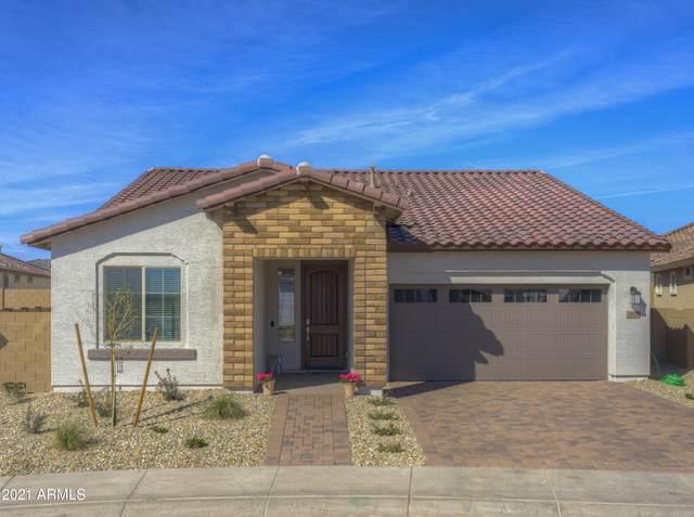 24878 N 172ND Drive, Surprise, AZ 85387 (MLS #6191705) :: Yost Realty Group at RE/MAX Casa Grande