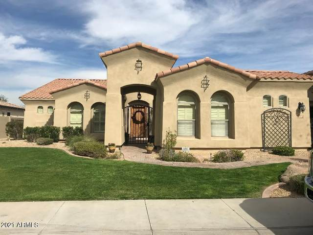 2497 N 141ST Lane, Goodyear, AZ 85395 (MLS #6191740) :: Long Realty West Valley