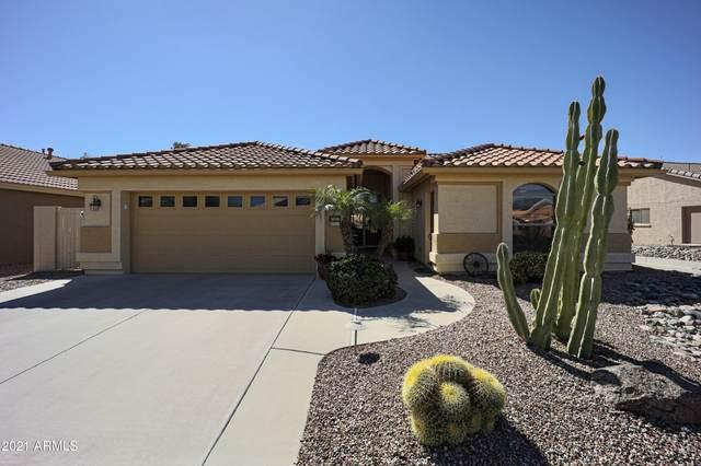 15623 W Earll Drive, Goodyear, AZ 85395 (MLS #6191758) :: Service First Realty