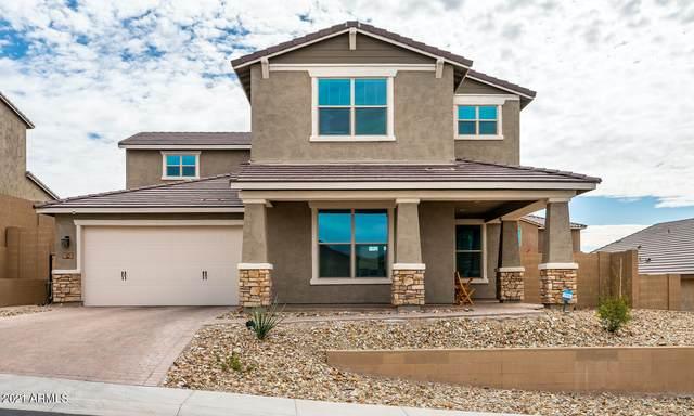 3011 W Tumbleweed Drive, Phoenix, AZ 85085 (MLS #6191775) :: Yost Realty Group at RE/MAX Casa Grande