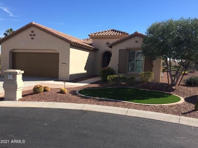 1831 N 165TH Avenue, Goodyear, AZ 85395 (MLS #6191902) :: Midland Real Estate Alliance