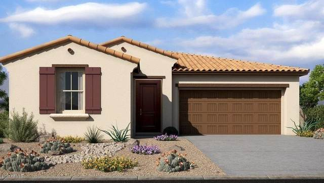 4227 W Ardmore Road, Laveen, AZ 85339 (MLS #6192151) :: Yost Realty Group at RE/MAX Casa Grande