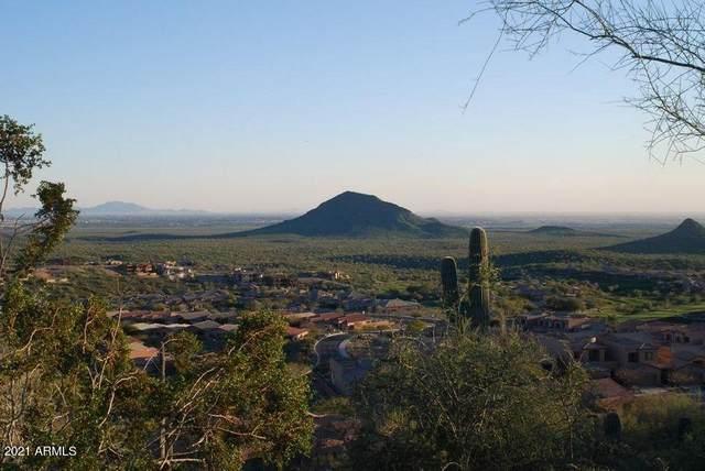 10232 N Palisades Boulevard, Fountain Hills, AZ 85268 (MLS #6192210) :: Yost Realty Group at RE/MAX Casa Grande
