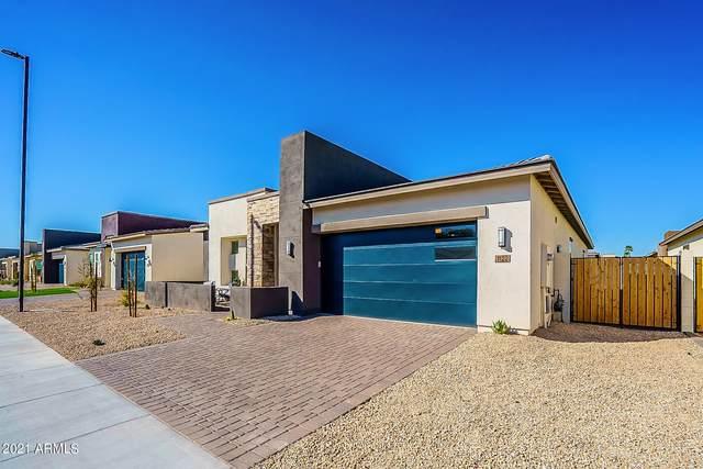 1122 E Nolan Place, Chandler, AZ 85249 (MLS #6192387) :: Yost Realty Group at RE/MAX Casa Grande