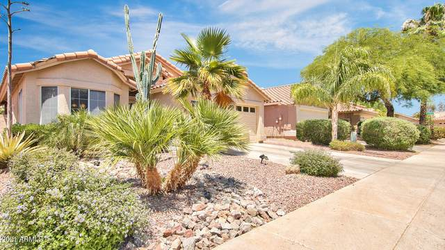 7262 E Camino Del Monte, Scottsdale, AZ 85255 (MLS #6192413) :: The Laughton Team