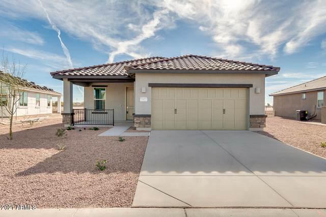 21023 N Evergreen Drive, Maricopa, AZ 85138 (MLS #6192462) :: Yost Realty Group at RE/MAX Casa Grande