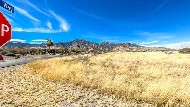 xxxx E Lippizan Way, Hereford, AZ 85615 (MLS #6192470) :: Service First Realty